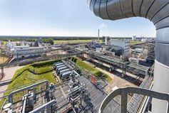 BASF-Anlage in Schwarzheide: neue Batteriefabrik geplant.