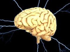 Gehirn: weiterer Risikotyp für Alzheimer.