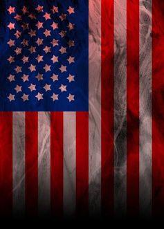 USA /VSA Flagge