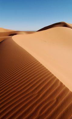 Eine Sandwüste ist fast völlig Klimaneutral da in ihr fast nichts lebt (Symbolbild)