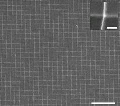 Nanodraht-Gitter: per Wasser gefertigt. Bild: Tour Group, rice.edu