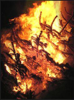 Brennender Weihnachtsbaum (Symbolbild)