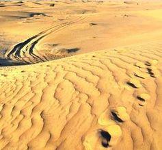 Wüste Sahara: Sie ist zu 99,375% klimaneutral da praktisch fast kein Leben in ihr existiert (Symbolbild)
