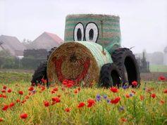 Traktor aus Stroh: Neuer Biosprit kommt vom Feld. Bild: knipseline, pixelio.de