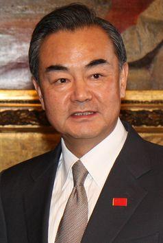 Wang Yi 2014
