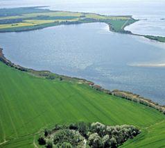 Strelasund bei Rügen Bild: Abraham / WWF