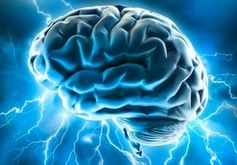 Gehirn Bild: flickr.com/Allan Ajifo