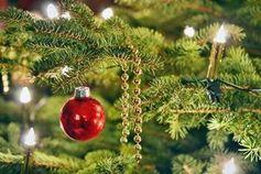 Weihnachtsbaum: stört WLAN-Verbindungen. Bild: pixelio.de/Andreas Hermsdorf