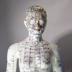 Akupunkturpuppe Bild: Harald Wanetschka / PIXELIO