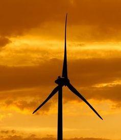 Windrad: Preisdruck steigt weltweit stark an.
