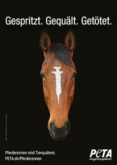 Pferderennen sind Tierquälerei Bild: Design: Dana Mulranen • Image: © Paul Smyres