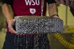 Regenwasser rinnt dank des neuen Verfahrens durch porösen Beton. Bild: wsu.edu