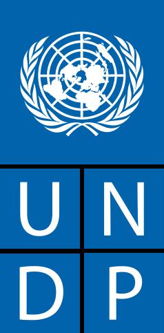 """Logo des """"Entwicklungsprogramm der Vereinten Nationen"""" (UNDP)"""