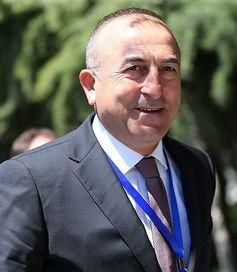 Mevlüt Çavuşoğlu (2015)