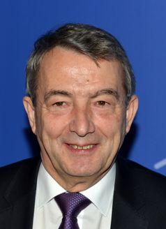 Wolfgang Niersbach, 2014