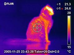 Wärmesensor: geht ohne externen Energieaufwand. Bild: wikimedia.com/Lcamtuf