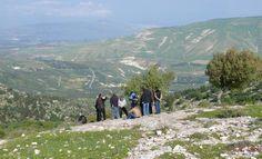 Workshop-Teilnehmer im Gebiet des Umm Qays Umland‐Survey im Yarmouk Nature Reserve Quelle: DAI (idw)