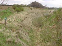 Zudem entnahmen die Forscher Gesteinsproben aus der ehemaligen Ziegelgrube von Sooß bei Baden, die später als Mülldeponie fungierte und aufgefüllt wurde. Quelle: (Bild: Michael Wagreich) (idw)