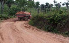 Die Lastwagen der Holzfäller holen Tag und Nacht Holz aus dem Wald der Awá. Bild: Survival