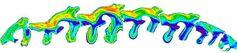 """Zahnreihe eines afrikanischen Spitzmaulnashorns. Die Winkel der Kaufläche sind in diesem 3D Modell in Farben umgesetzt. Blautöne sind flache Täler, in denen Blattnahrung durch hohe Drücke """"ausgequetscht""""  wird. Rot und orange zeigen Schneidekanten. Hier herrschen die höchsten Scherkräfte im Kausystem. Quelle: Foto: UHH/Landwehr (idw)"""
