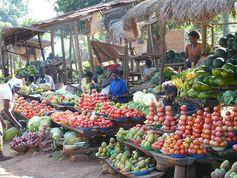 Bild 2: Für die Vielfalt der Ernährung sind lokale Märkte wichtiger als die Subsistenzproduktion. Quelle: Quelle: M. Qaim (idw)