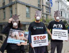 In London demonstrierten PETA-Aktive mit Eselmasken vor der griechischen Botschaft  Bild: © PETA UK Fotograf: PETA Deutschland e.V.