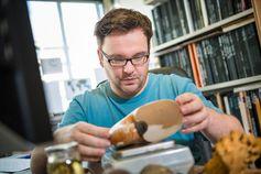 René Hoffmann erforscht die Lebensweise von ausgestorbenen Meerestieren. Dazu nutzt er unter anderem Vergleiche mit heute noch lebenden Arten. Quelle: © RUBIN, Foto: Gorczany (idw)