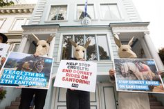 Auch in San Francisco demonstrierten PETA-Aktive vor dem griechischen Konsulat.  Bild: © PETA USA Fotograf: PETA Deutschland e.V.