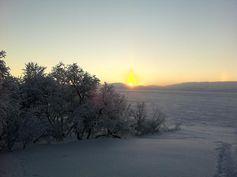 ... in Kilpisjärvi, Finnisches Lappland. Quelle: Foto: C. Engelhardt/IGB (idw)