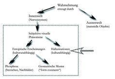 Bild 2: Bild 2: Arten von subjektiven visuellen Phänomenen. Grafik: Floco Tausin