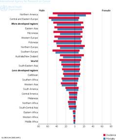 WHO - Häufigkeit von Lungenkrebs und Sterberate nach Geschlecht und Land Bild: brd-schwindel.org