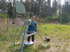 Im Auwald hat die Wissenschaftlerin auch elf Pollenfallen installiert, um den Pollenflug zu dokumentieren. Täglich müssen die Objektträger ge-wechselt werden, an denen die Pollen haften bleiben. Quelle: Anna Eisen/upd (idw)