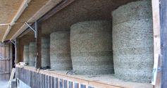 Diese Heuballentrocknungsanlage steht seit 2009 auf einem Bauernhof mit eigener Käseherstellung und Vermarktung in der Nähe von Freiburg. Die Ballen lassen sich bequem mit der Frontladergabel aufladen. Je nach Wassergehalt benötigen die Heuballen 12 - 18 Std. bis sie lagerfähig trocken sind. Die Heutrocknungsanlage steht auf einem ehemaligen Fahrsilo, was jetzt als Maschinenlagerhalle dient. Mit dem künstlich getrocknetem Qualitätsheu lässt sich feinster Rohmilchkäse erzeugen. Bild: Umweltbund e.V.
