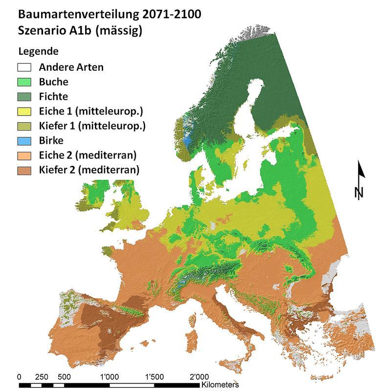 abb 1 potenzielle verbreitung der wichtigsten baumarten in europa f r das szenario a1b. Black Bedroom Furniture Sets. Home Design Ideas