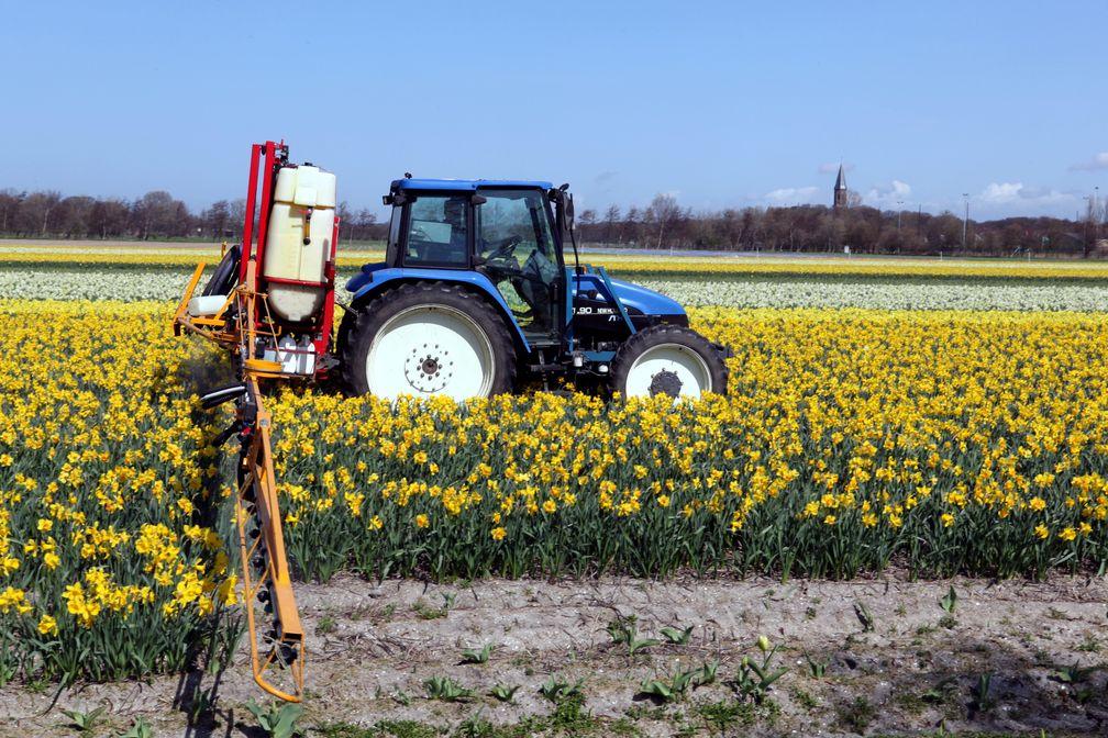 Landwirtschaft: Traktor bei der Ausbringung eines Pflanzenschutzmittels.