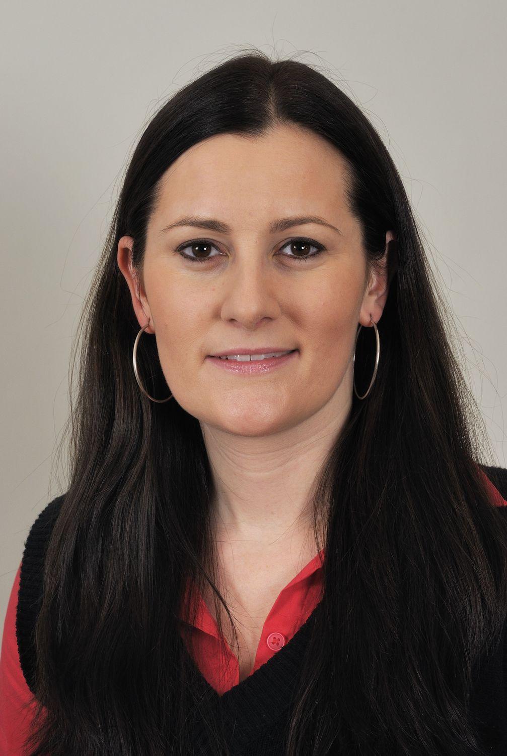 Janine Wissler (2013)