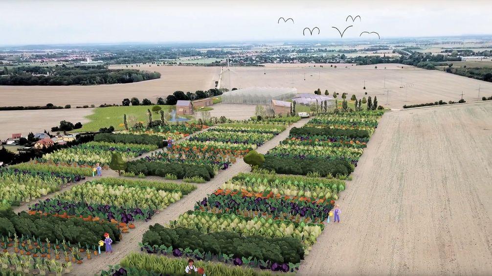 KoLa Leipzig eG: Aufbau einer der größten solidarischen Landwirtschaften Europas