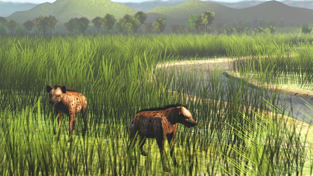 Heute ausgestorbene Art der Tüpfelhyänen auf der Malaiischen Halbinsel in einer Umwelt wie vor 100.000 Jahren. Quelle: Illustration: Kantapon Suraprasit, Universität Tübingen (idw)