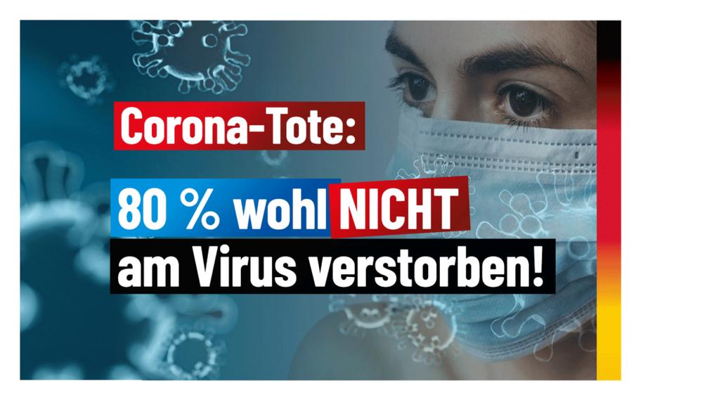 Bild: AfD Deutschland