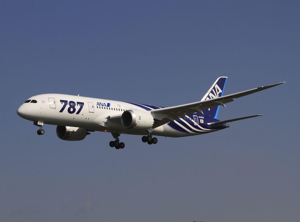 Boeing 787 in der Sonderlackierung, in der sie an ANA ausgeliefert wurde