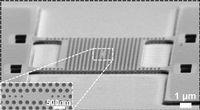 Lichtfalle (Mitte) und Membran unter dem Mikroskop. Bild: tue.nl/en