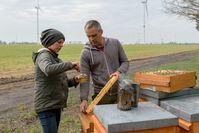 Glyphosat im Honig: Imkerpaar Sebastian und Camille Seusing bei der Entnahme von Honigproben.  Bild: Aurelia Stiftung Fotograf: Florian Amrhein