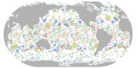 Meeresplankton weist eine erstaunliche Fülle an Formen und Arten aus. Quelle: ETH Zürich / Meike Vogt und Jorge Martinez-Rey (idw)