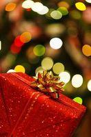Geschenk: Umwelt kommt oft zu kurz.