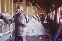 Baumwollverarbeitung (Symbolbild)