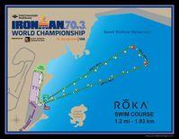 """Kurs des Iranman 70.3 Bild: Screenshot Internetseite: """"https://www.ironman.com/im703-world-championship-course"""" / Eigenes Werk"""