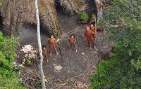 In der Region, in der vor knapp vier Jahren die bekannten Luftaufnahmen eines unkontaktierten Volkes entstanden, haben die Sichtungen unkontaktierter Indianer stetig zugenommen. Bild: © Gleison Miranda/FUNAI/Survival uncontactedtribes/fotosbrasilien