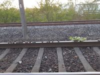 Auf den Gleisen aufgelegte Steine / Bild: Bundespolizei