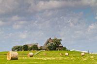 """Die Hallig Hooge im Biosphärengebiet Nationalpark Schleswig-Holsteinisches Wattenmeer und Halligen  Bild: """"obs/Nationalpark Schleswig-Holsteinisches Wattenmeer/Martin Stock/LKN.SH"""""""