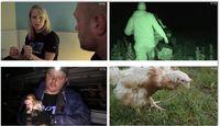 Befreiungsaktion des PETA-Einsatzteams. Bild: PETA